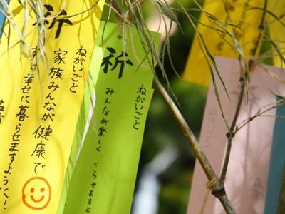 七夕飾り笹はどこに売ってるのか、いつまで飾るのか調べてみた