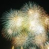 江戸川花火大会2016の日時や会場場所、人出や混雑、オススメスポットはココ!