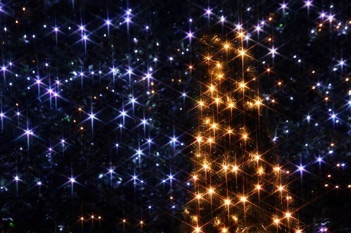 芭蕉元禄大垣イルミネーション2015期間や点灯時間、近くの駐車場や花火情報