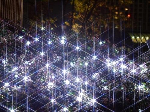 弘前イルミネーション期間や点灯時間、場所や駐車場、混雑情報