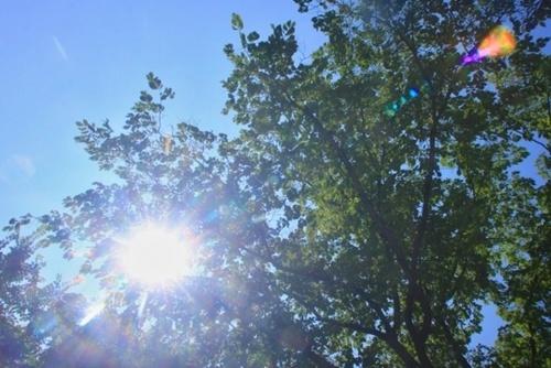 夏のワイシャツ脇汗対策、すぐに気にせず歩ける3つの対策方法!