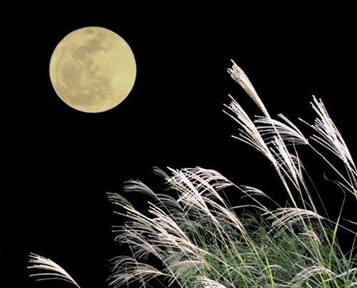 中秋の名月うんちく2016年はいつ?十五夜と言われる理由やお供え物