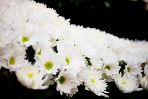 葬式の供花や供物って何?読み方や贈る時の注意点