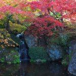 箱根湯本の紅葉、見頃の時期や近くの駐車場、最寄り駅や宿泊場所情報