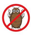 ゴキブリが苦手なものや嫌いなものあれこれ、Gのことを知れば対策できる!