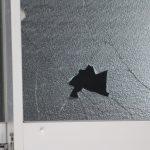 台風の窓ガラス対策!もし割れたら保険は出る?賃貸だと誰が修理する?